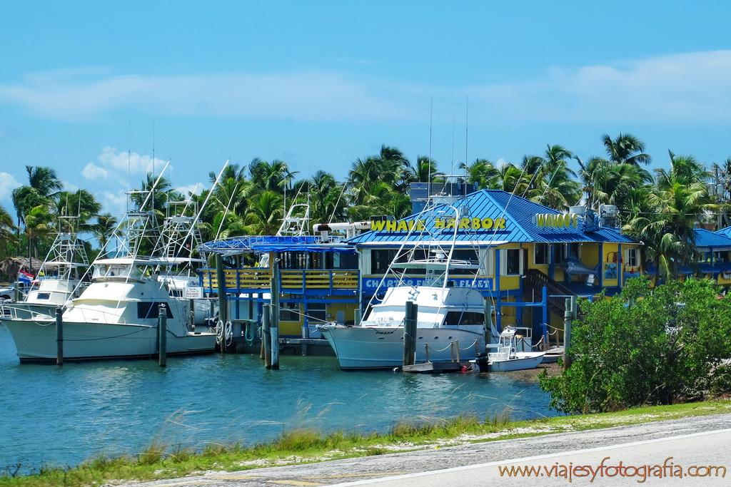 Cayos de Florida Keys 7